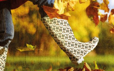 I Feira Feminista de Outono en Ribadeo